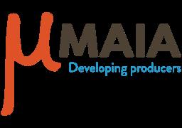 Immagine di MAIA Workshops: il 20 giugno a Palermo